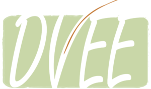 dvee-logo